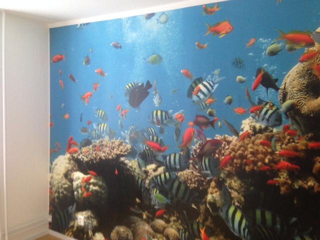Fototapet korallrev